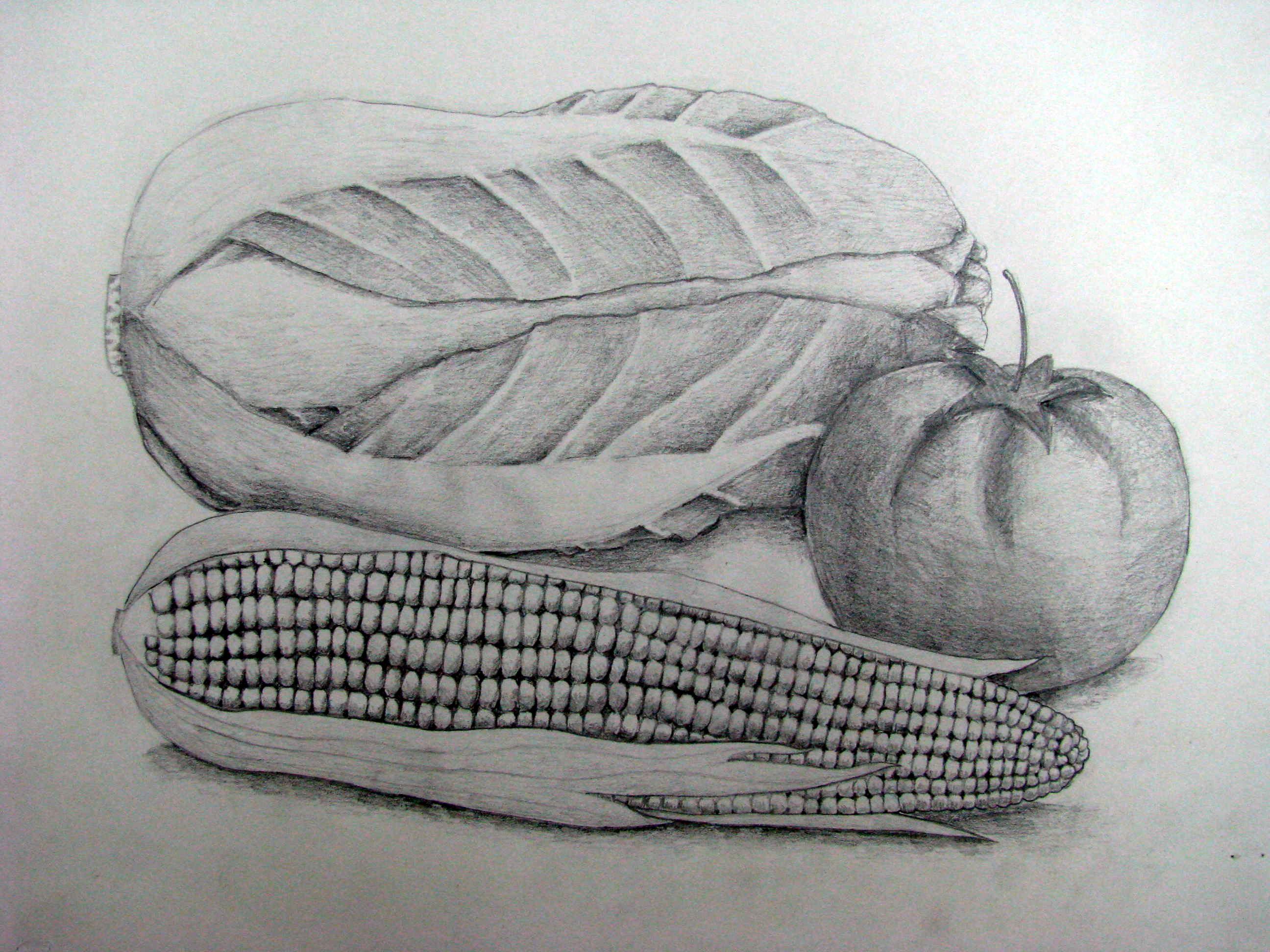 作品名称:静物素描    学生姓名:杨蔼婷    作画